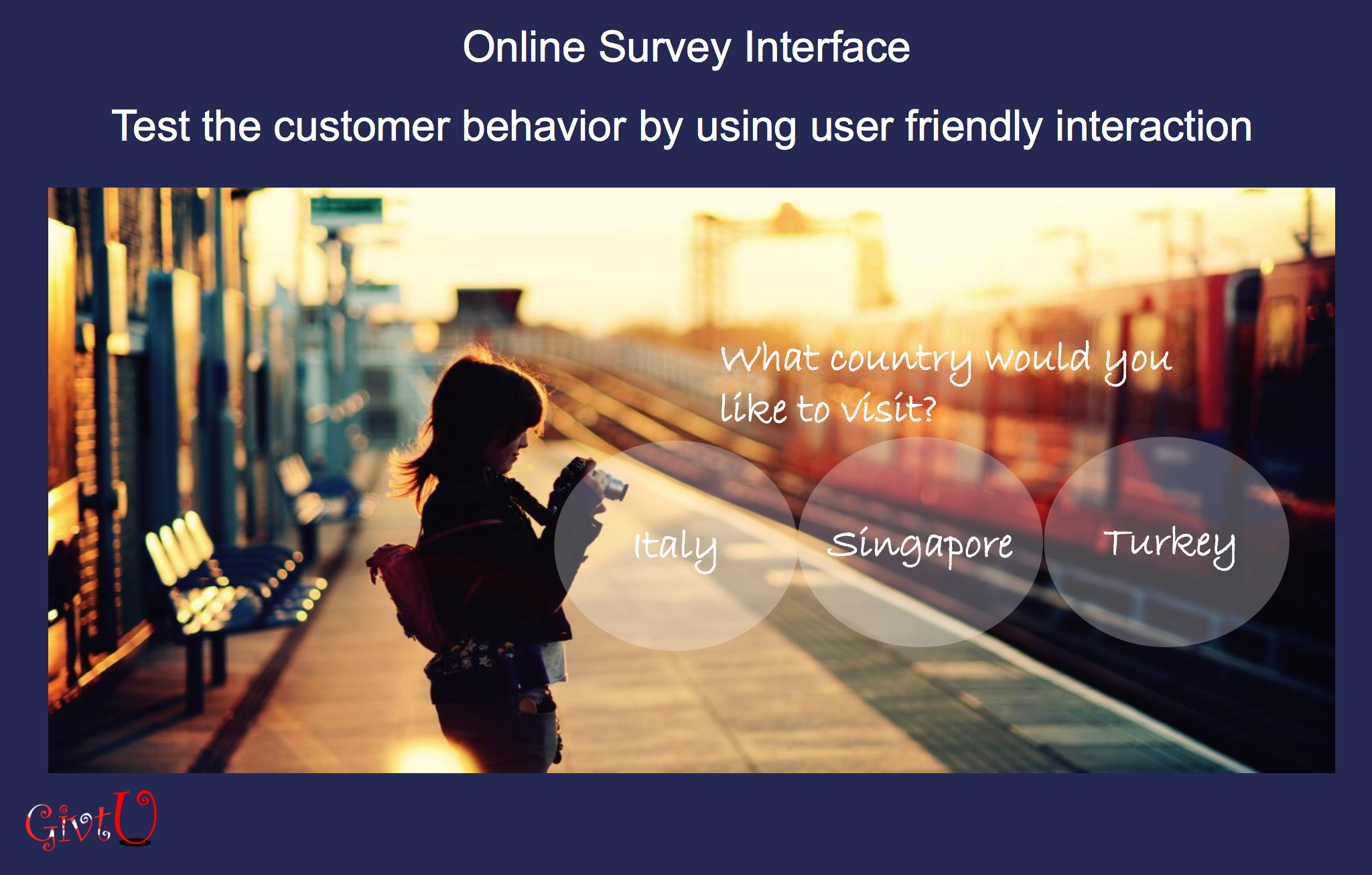 Online survey interface